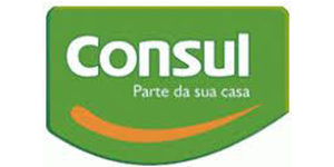 Quadsel Systems Pvt Ltd client Consul